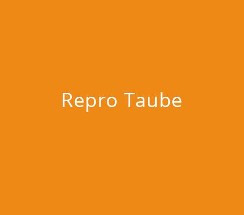 Print-Design – Repro Taube