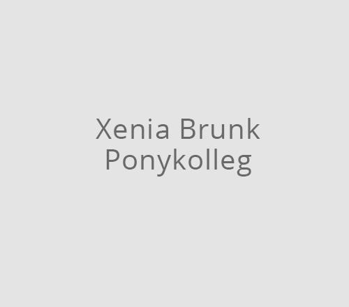 Print-Design – Xenia Brunk | Ponykolleg
